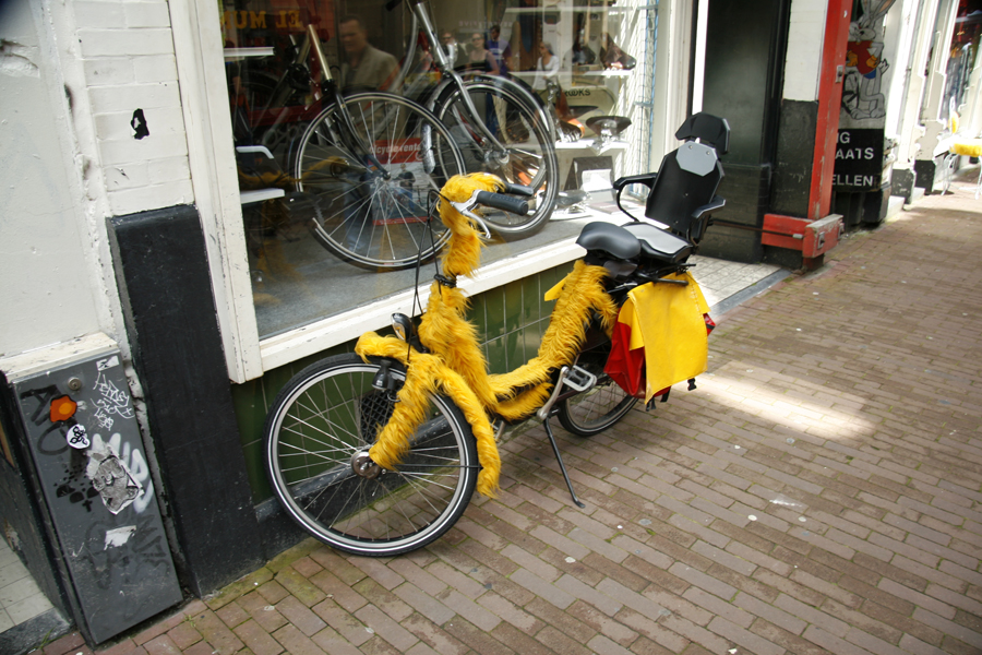Big Bird bike
