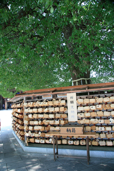 Prayers left at Meiji Shrine